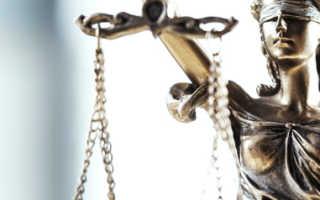 Процедура обжалования судебных постановлений в гражданском процессе