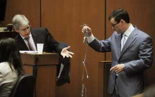 Права и обязанности эксперта в уголовном процессе