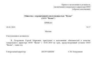 Директор ООО без зарплаты: как оформить