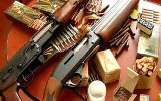 Ответственность за хранение холодного оружия в России