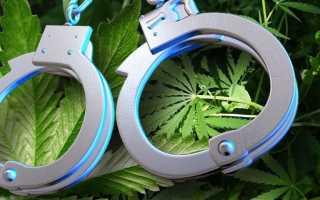 Ответственность за хранение наркосодержащих веществ